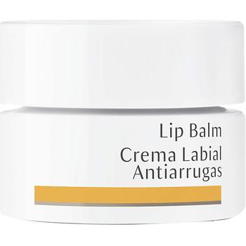 Beauté Femme Hydratants & nourrissants Dr. Hauschka Lip Balm Anti-wrinkles