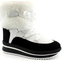 Chaussures Femme Bottines Antarctica ANT-CCC-5855-BI Bianco