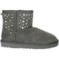 Chaussures Femme Bottes de neige Pregunta PL5854TZ 002 Gris
