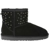Chaussures Femme Bottes de neige Pregunta PL5854TZ 001 Noir