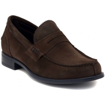 Chaussures Homme Mocassins Soldini ALCE TARTUFO  105,7
