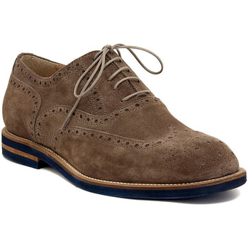Chaussures Homme Derbies Wexford VELOUR ARDESIA Multicolore