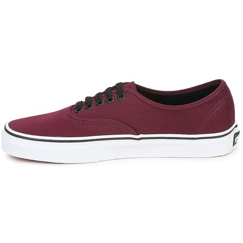Vans Vans Bordeaux Authentic Basses Authentic Baskets BdoEreWQCx