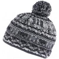 Accessoires textile Bonnets Léon Montane Bonnet pompon noir et gris doublure polaire Alpy Leon Montane Noir