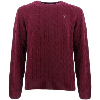 Vêtements Homme Pulls Gant COLOR FRIDAY Bordeaux