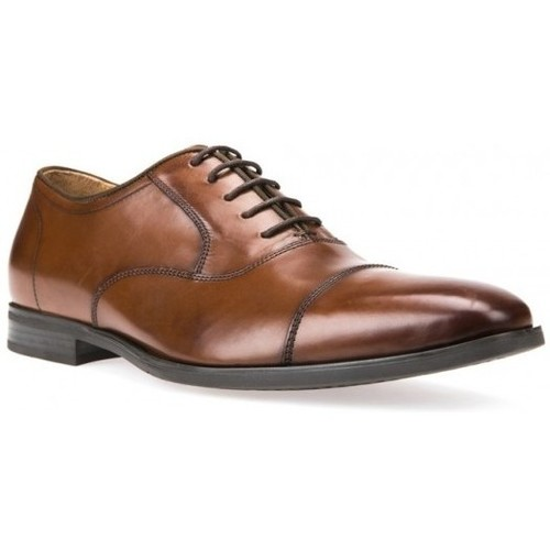 Chaussures Homme Derbies Geox Ville U New Life E Marron