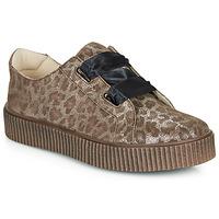 Chaussures Fille Baskets basses Catimini CAVANILLE Leopard