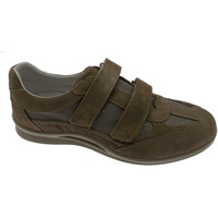 Chaussures Homme Baskets basses Loren LOG0250t tortora