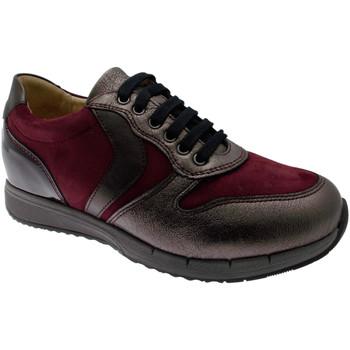 Chaussures Femme Baskets basses Calzaturificio Loren LOC3818bo tortora