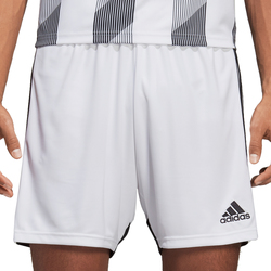 Vêtements Homme Shorts / Bermudas adidas Originals Tastigo 19 Shorts Weiss