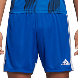 Vêtements Homme Shorts / Bermudas adidas Originals Tastigo 19 Shorts Blau