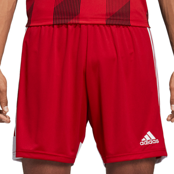 Vêtements Homme Shorts / Bermudas adidas Originals Tastigo 19 Shorts Rot