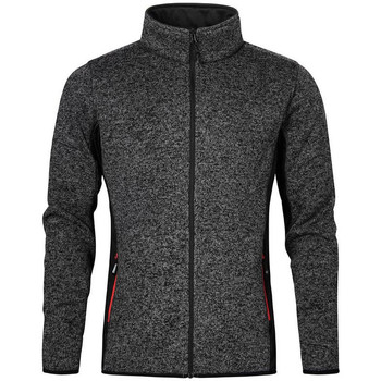 Vêtements Homme Polaires Promodoro Veste de travail en laine Hommes graphite chiné