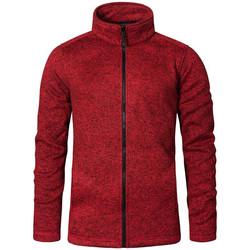 Vêtements Homme Polaires Promodoro Veste en laine C+ Hommes Rouge chiné