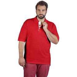 Vêtements Homme Polos manches courtes Promodoro Polo supérieur Fan Autriche grandes tailles Hommes rouge feu