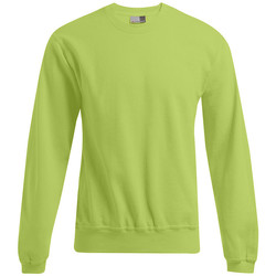Vêtements Homme Sweats Promodoro Sweat 80-20 grandes tailles Hommes vert lime sauvage