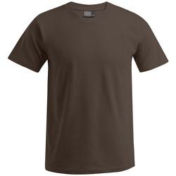 Vêtements Homme T-shirts manches courtes Promodoro T-shirt Premium grandes tailles Hommes marron