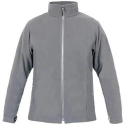 Vêtements Homme Polaires Promodoro Veste polaire C+ grandes tailles Hommes gris acier