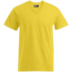 Vêtements Homme T-shirts manches courtes Promodoro T-shirt Premium col V grandes tailles Hommes or