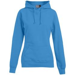 Vêtements Femme Sweats Promodoro Sweat capuche basic 80-20 grandes tailles Femmes turquoise