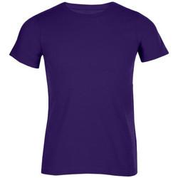 Vêtements Homme T-shirts manches courtes Promodoro T-shirt bio grandes tailles Hommes violet