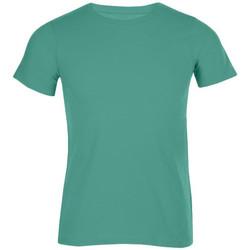 Vêtements Homme T-shirts manches courtes Promodoro T-shirt bio grandes tailles Hommes vert émeraude