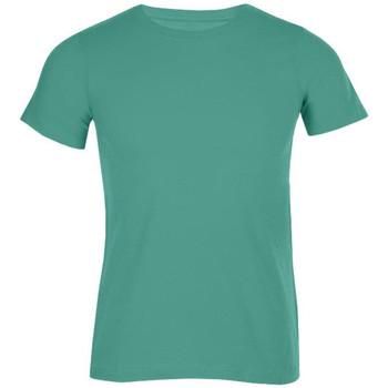 Vêtements Homme T-shirts manches courtes Promodoro T-shirt bio hommes vert émeraude