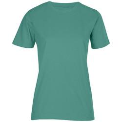 Vêtements Femme T-shirts manches courtes Promodoro T-shirt bio Femmes vert émeraude