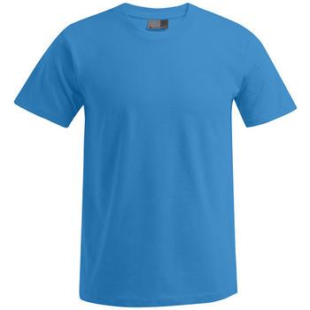 Vêtements Homme T-shirts manches courtes Promodoro T-Shirt Premium Hommes turquoise