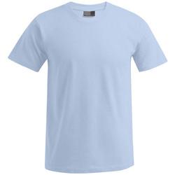 Vêtements Homme T-shirts manches courtes Promodoro T-shirt Premium grandes tailles Hommes bleu clair