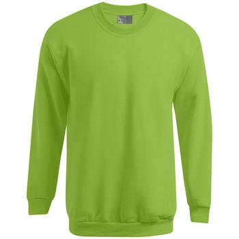 Vêtements Homme Sweats Promodoro Sweat Premium grandes tailles Hommes vert forêt