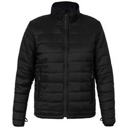 Vêtements Homme Doudounes Promodoro Veste doudoune C+ grandes tailles Hommes noir