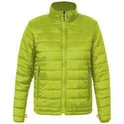 Vêtements Homme Doudounes Promodoro Veste doudoune C+ grandes tailles Hommes Vert lime