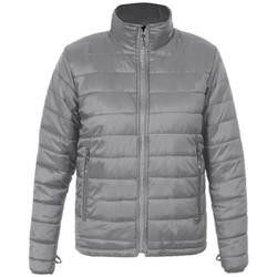 Vêtements Homme Doudounes Promodoro Veste doudoune C+ grandes tailles Hommes gris acier