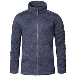 Vêtements Homme Polaires Promodoro Veste en laine C+ Hommes bleu chiné