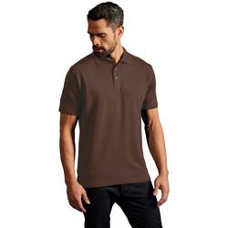 Vêtements Homme Polos manches courtes Promodoro Polo supérieur Hommes marron