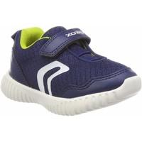 Chaussures Garçon Baskets basses Geox B Waviness bleu
