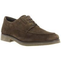 Chaussures Homme Derbies 24 Hrs 24 Hrs mod.8657 Marron