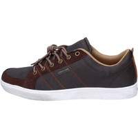 Chaussures Homme Baskets basses Goodyear sneakers marron cuir daim wh574 marron