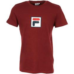 Vêtements Homme T-shirts manches courtes Fila Evan 2.0 Tee SS rouge
