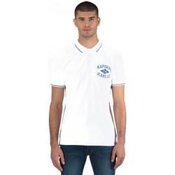 Vêtements Homme Polos manches courtes Kaporal Polo Homme Coton Piqué Polux Blanc Motifs Bleu 1