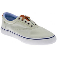 Chaussures Homme Baskets basses Sperry Top-Sider Striper Chamb Baskets basses Vert