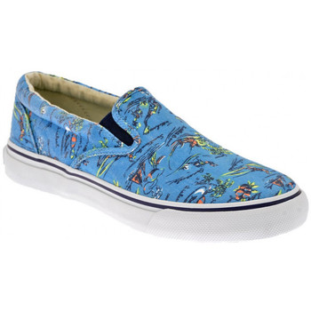 Chaussures Homme Slip ons Sperry Top-Sider Striper Wash Baskets basses Multicolore