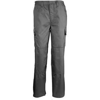 Vêtements Pantalons cargo Sols ACTIVE PRO WORKS Gris