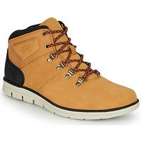 Chaussures Homme Baskets montantes Timberland BRADSTREET HIKER Blé / Marron