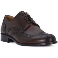 Chaussures Homme Derbies Exton VITELLO LEGNO Marrone