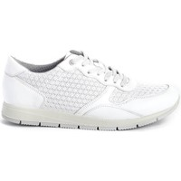 Chaussures Femme Baskets basses Imac 307060 blanc