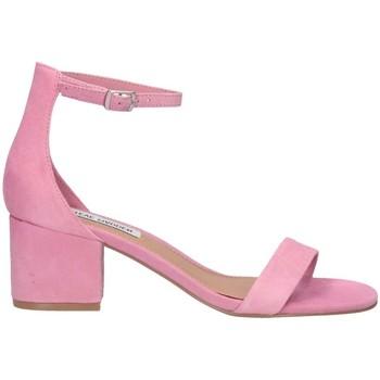 Chaussures Femme Sandales et Nu-pieds Steve Madden SMSIRENEE-MILPINK rose