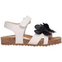 Chaussures Fille Sandales et Nu-pieds Il Gufo G560 BIANCO/BLU Blanc / Bleu