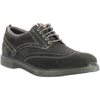 Chaussures Homme Derbies Wrangler CROSSFIELD BROGUE GRIGI Gris